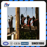 11kv fino a 33kv Auto Circuit Recloser Kema Type Tested
