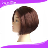 Black Women (LW-010)를 위한 대중적인 Fashion Style Synthetic Lace Front Short 바브 Wigs