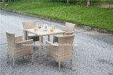 Таблица и стул напольного сада ротанга Wicker обедая