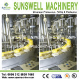 Nuovo Design 200-2000ml Bottles Fruit Juice Filling Plant/Juice Filling Machine