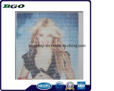 Impresión unidireccional de la pantalla del vinilo de la impresión de Digitaces de la visión (120mic papel del desbloquear de la película 120g)