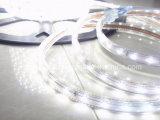 SMD2835 hohes helles LED Seil-Licht (HVSMD2835-60)