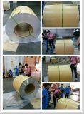 La hoja acanalada grabada el estuco de aluminio pegó con el papel del arte (PKMB)