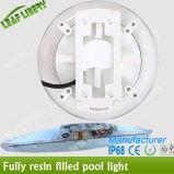Iluminación LED de la resina de epoxy piscina