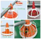 Schicht-Nest im Geflügel-Haus mit den automatischen und des Handbuch-zwei Optionen