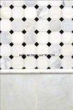 Mosaico de mármol blanco popular y moldeado de mármol