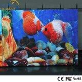 Cabinet polychrome LED de fer d'intense luminosité fixe annonçant l'affichage P3 d'intérieur