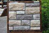 Costruzione delle mattonelle della parete e decorazione, pietra artificiale della coltura (YLD-71020-1)