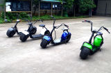 Rifornimento del Manufactory di Yongkang! Motorino elettrico di mobilità delle 2 rotelle (Jy-Es005
