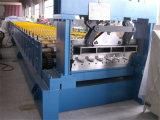 Metallstahlfußboden-Plattform walzen die Formung der Zeile Maschine kalt