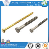 Vis en acier inoxydable Screw Vis à vis hexagonale Screw