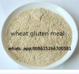 Poudre de protéines de blé pour fourrage animal