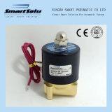 Elettrovalvola a solenoide astuta del vapore di serie 2W