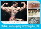 Männliche Hormone flüssiges Tren Ena 100 Trenbolone Enanthate 100mg/Ml für Muskel-Gewinn