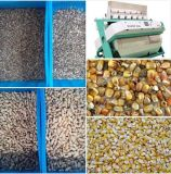 해바라기 씨를 위한 색깔 분류하는 사람, 별거 기계, 옥수수, 옥수수, 렌즈콩, 피스타치오 및 곡물 물자
