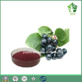Anthocyanidins выдержки Chokeberry 100% чисто естественные черные от 1% до 25%