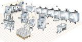 1200L de Lopende band van het roomijs/De Fabriek van het Roomijs