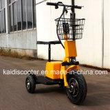 Voertuig van het Sightseeing van de Mobiliteit van 3 Wielen van Ce het Gediplomeerde Elektrische Zappy 500W