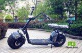 Gros scooter électrique de vente chaud de Citycoco 1000W de pneu