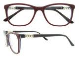Модное стекло глаза рамки Eyeglass обрамляет оптически стекла глаза зрелищ