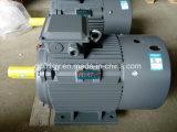 Moteur électrique asynchrone triphasé à haute efficacité Siemens Beide