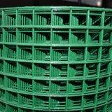 acoplamiento soldado galvanizado o PVC cubierto de 1inch de alambre para la jaula de pájaro