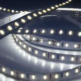 Luz de tira impermeable de 12V SMD 3014 LED