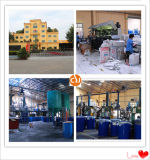 Dichtingsproduct van het Silicone van het Dichtingsproduct van het algemene Doel het In het groot voor Hol Glas