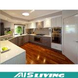 Gabinete de cozinha disponível do projeto moderno da alta qualidade (AIS-981)