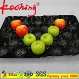 Der Qualitäts-29*49 Frucht-verpackentellersegment Schwarz-frische der Tomate-PP/PVC