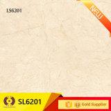 Dekoration-Marmor-Entwurfs-Porzellan-Wand-Fliese-Bodenbelag-Fliesen (66008A)