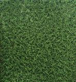 2017의 새로운 디자인된 Grass-Like PVC 비닐 마루 도와/판자