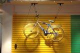 Elevatore dell'interno della bici del soffitto di memoria della bici di economia di spazio