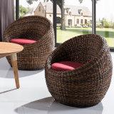 طبيعيّ [رتّن] أثاث لازم حديث وقت فراغ كرسي تثبيت وقت فراغ أريكة 304-1