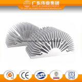 Industriële Gebruik van het Profiel van de Legering van het Aluminium van Heatsink het Uitgedreven