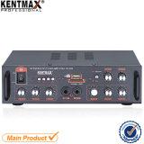 усилитель USB панели утюга 10W (KA-999)