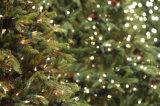 مسيكة [لد] عيد ميلاد المسيح خارجيّة [فيري ليغت] لأنّ [كريستمس تر] زخارف