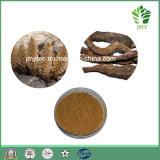 Hoher natürlicher Cistanche Tubulosa Auszug: Phenylethanoid Glykoside 40%, 80% durch HPLC