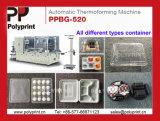 Piatto materiale del cassetto del contenitore degli alimenti a rapida preparazione dei pp che forma macchina