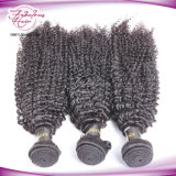 Weave Curly Kinky peruano do cabelo de Remy