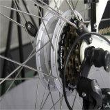 A buon mercato 26 '' bici elettrica della città della strada della donna di 36V 250W