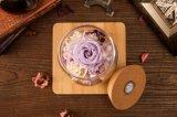 Botella luminosa del deseo de las flores frescas de la constelación de Ivenran para el presente y la decoración creativos