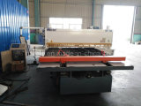 Machine de tonte de machine d'oscillation de l'oscillation Shear/CNC de la série QC12y Hycraulic