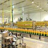 Cofcoet toneladas por hora secador de placas