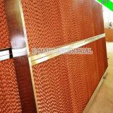 Garniture évaporative de refroidissement par eau pour la ferme avicole de serre chaude