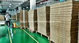 Lastra di vetro solare approvata 260W di TUV/CE/IEC/Mcs poli/modulo solare