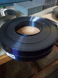 Calibro per applicazioni di vernici di alta qualità per la stampatrice del rilievo