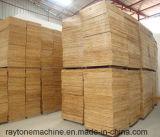 Bambusblock-Ladeplatten-Ziegelstein-Vorstand-Ladeplatte für Block-Maschine