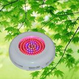 90W groeien Lichte leiden van het UFO Licht voor de Tuinen van de Installatie