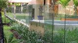 Toughened стекло для балюстрады плавательного бассеина